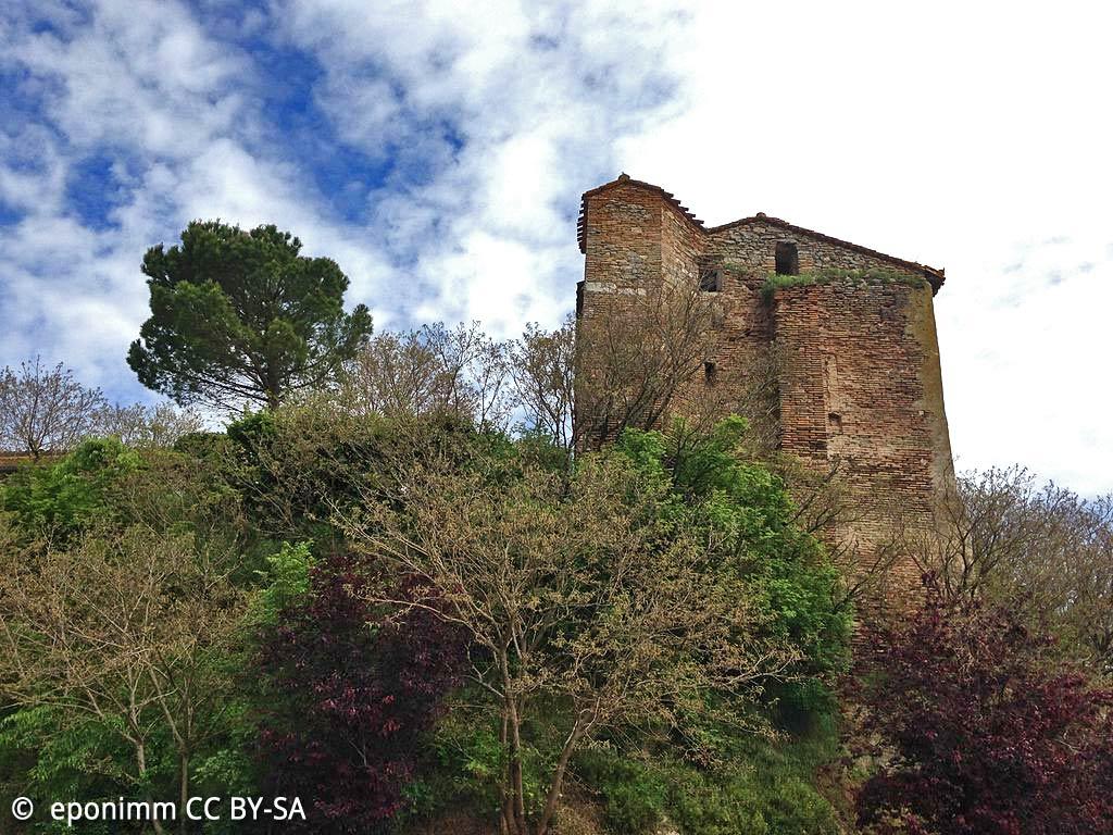Le Château de Puylaurens